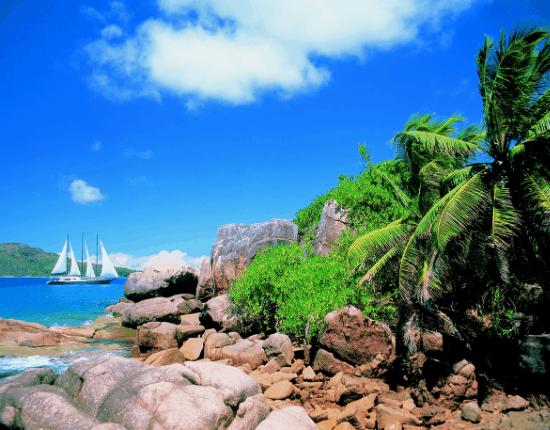 Silhouette Cruises _5