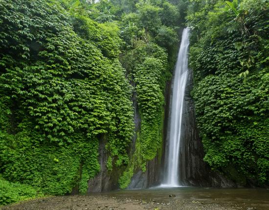 Bali hautnah-2