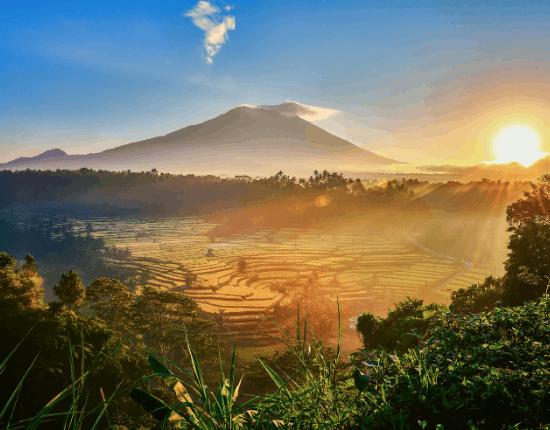 Bali hautnah-7