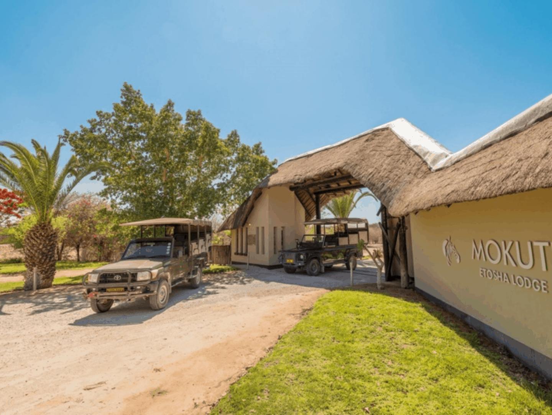 Mokuti Etosha Lodge-4