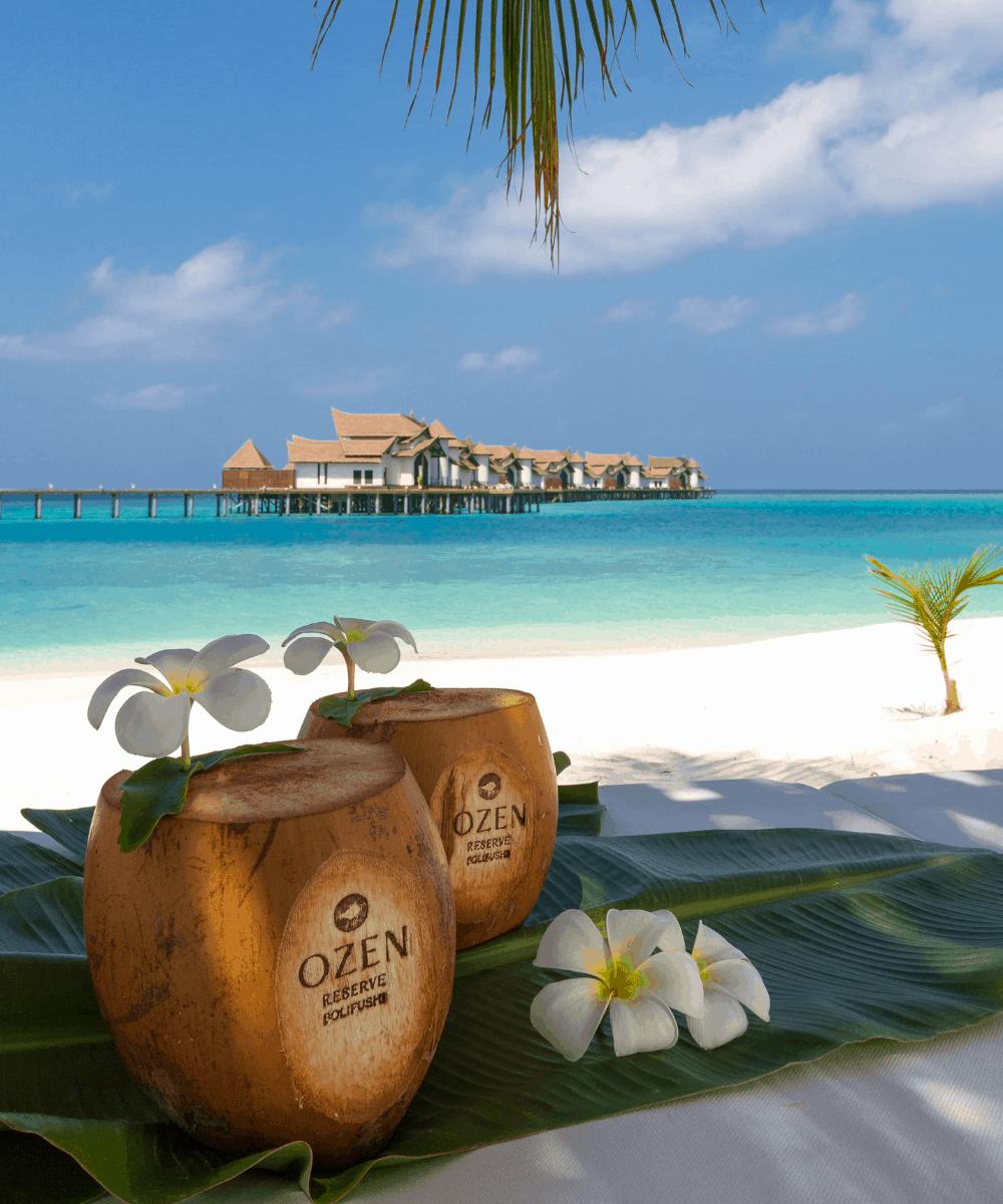 Ozen Reserve Bolifushi Malediven Kokosnuss am Strand
